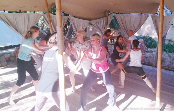 ZenmaX-group-balancing-and-energetic-intermezzos-for-yoga-retreats-and-workshops